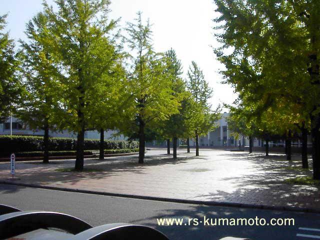 県立大学入口画像 熊本マップ「日赤通り」県立大学、旧免許センター付近タウン情報